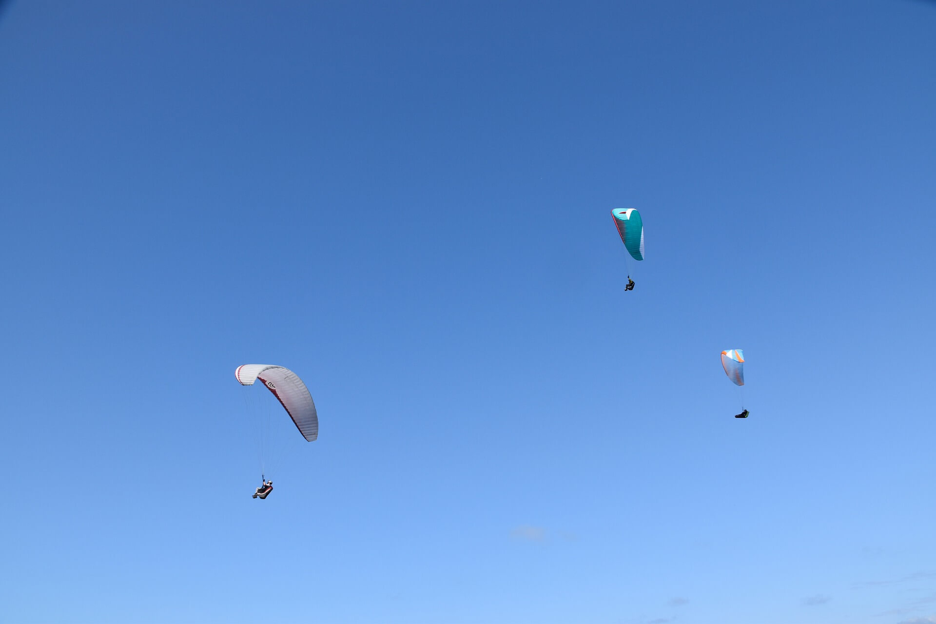 paragliders-4393757_1920